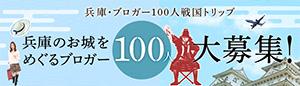 Banner_300