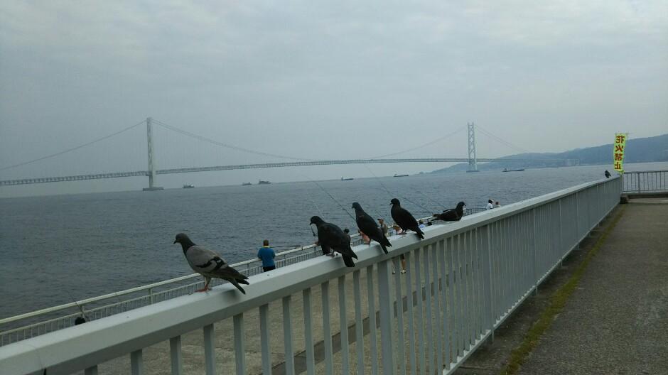 はと 明石海峡大橋